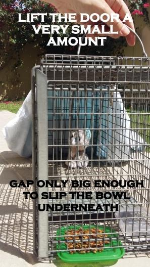 cage door lift
