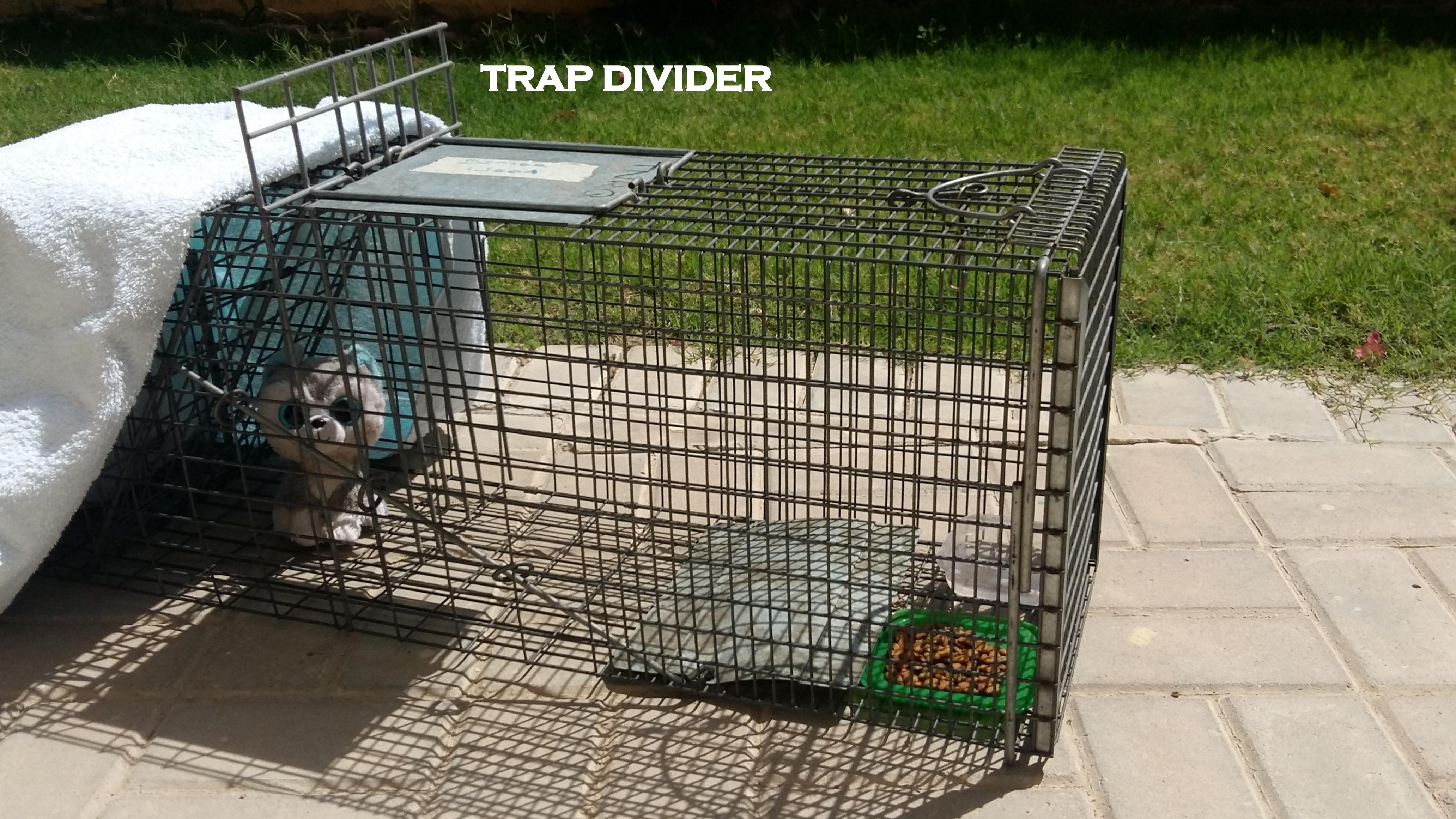 trap divider